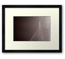 Silence 8588 Framed Print