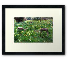 Oh Deer Framed Print