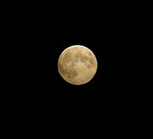 Full Blood Moon 10-2014 by Holly Schimpf