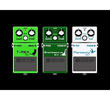 Dinosaur Effects Pedals Photographic Print
