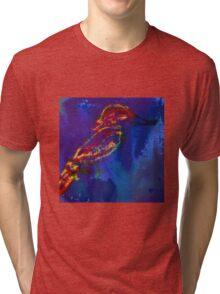 Colourful Bird Tri-blend T-Shirt