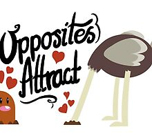 Opposites Attract by Torquem
