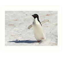 """Adelie Penguin  ~  """"The Dancer"""" Art Print"""