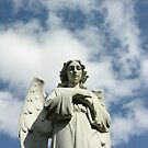 ANGEL by KevinKelly