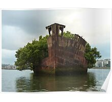 Homebush Bay Wreck - SS Ayrfield Poster