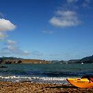 Cass Bay by kaneko