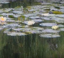 Impressionistic Water Lilies  by Carla Parris