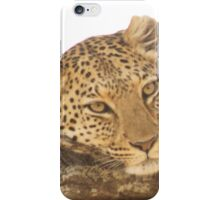 Fed Leopard iPhone Case/Skin