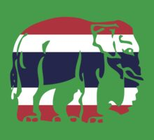 Asian Elephant Crossing Thai Flag Traffic Sign Kids Clothes