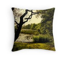 Provincetown Woods Throw Pillow