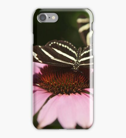 Zebra Longwing butterfly photography iPhone Case/Skin
