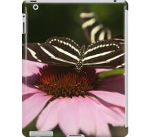 Zebra Longwing butterfly photography iPad Case/Skin