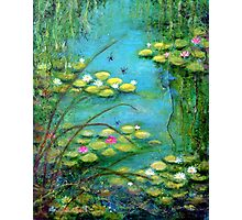 Fairy Tale Water Lilies Pond Photographic Print