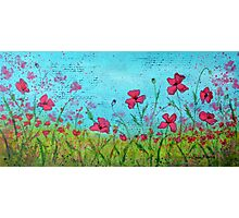 Playful Poppies of Provence Photographic Print