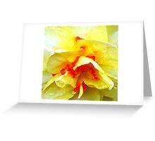 Yellow Ruffles Greeting Card