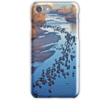 Geese on the South Platte iPhone Case/Skin