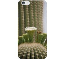 Blooming Saguaro Cactus iPhone Case/Skin