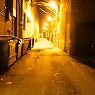 Belmont alley way by Kay-Trickpie