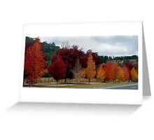 Autumn Colours...... Greeting Card