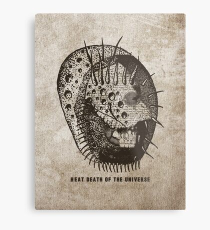 heat death of the universe Metal Print