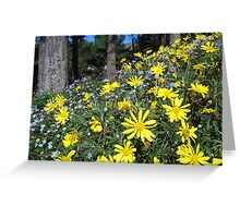 Yellow and blue daisies Greeting Card