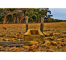 """Dry Stony Ground"" Photographic Print"