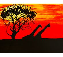 Safari Sunset Photographic Print