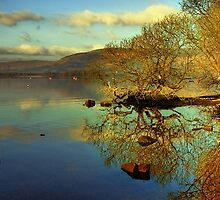 Loch Lomond HDR by Stevie Mancini