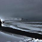 Vik Beach by Roddy Atkinson