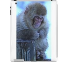 Japanese Macaque iPad Case/Skin