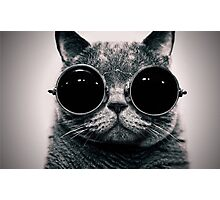 Cat with Glasses Poster ! Photographic Print