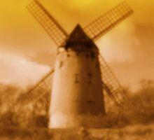 Bidston Mill 2 by Paul James