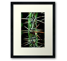 Careful Framed Print