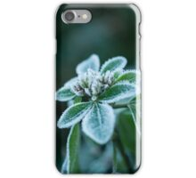 Minus Five iPhone Case/Skin