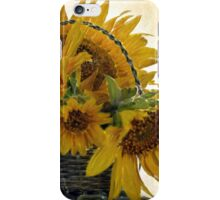 Oil Painted Sunflowers... Free State, South Africa. iPhone Case/Skin