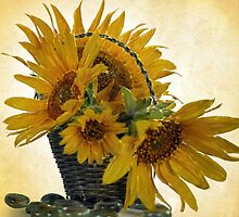 Oil Painted Sunflowers... Free State, South Africa. by Qnita