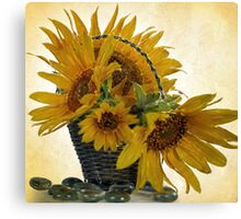 Oil Painted Sunflowers... Free State, South Africa. Canvas Print