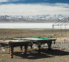Pool at Lake Nam-Tso, Tibet by Hugh Chaffey-Millar