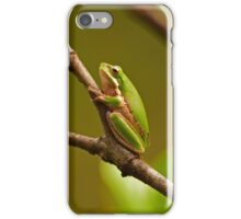 Little Tree Frog iPhone Case/Skin