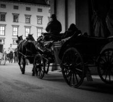 Horse-drawn carriage in Vienna, Austria Sticker