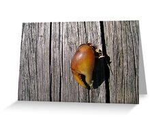 Crabs Claw Greeting Card