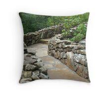 Path To Nowhere Throw Pillow