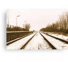 Cold Journey Canvas Print