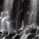 Mungalli Falls in Black & White by AnnieD