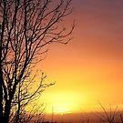 Last Sunrise of the year by Charles  Staig
