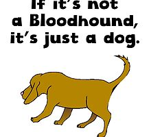 If It's Not A Bloodhound by kwg2200