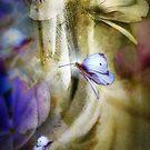 Free Spirits by Daniela M. Casalla