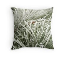 Hard Frost Throw Pillow