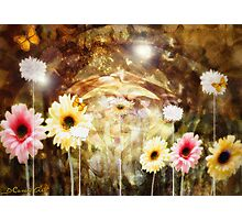 Laughing Earth Photographic Print