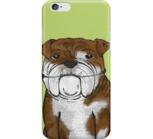 Persuing Perfection iPhone Case/Skin